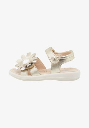 SCIANTIS - Walking sandals - gold