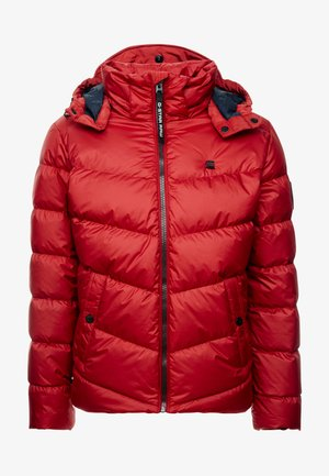 WHISTLER PUFFER - Winter jacket - dark baron