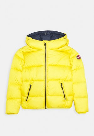 JUNIOR HOODED UNISEX  - Daunenjacke - bee/navy blue