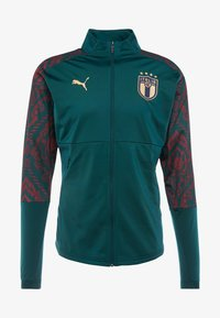 Puma - ITALIEN FIGC STADIUM THIRD JACKET - Træningsjakker - ponderosa pine/cordovan - 7