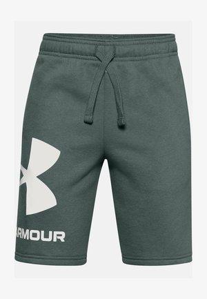 Sports shorts - lichen blue /  / onyx white
