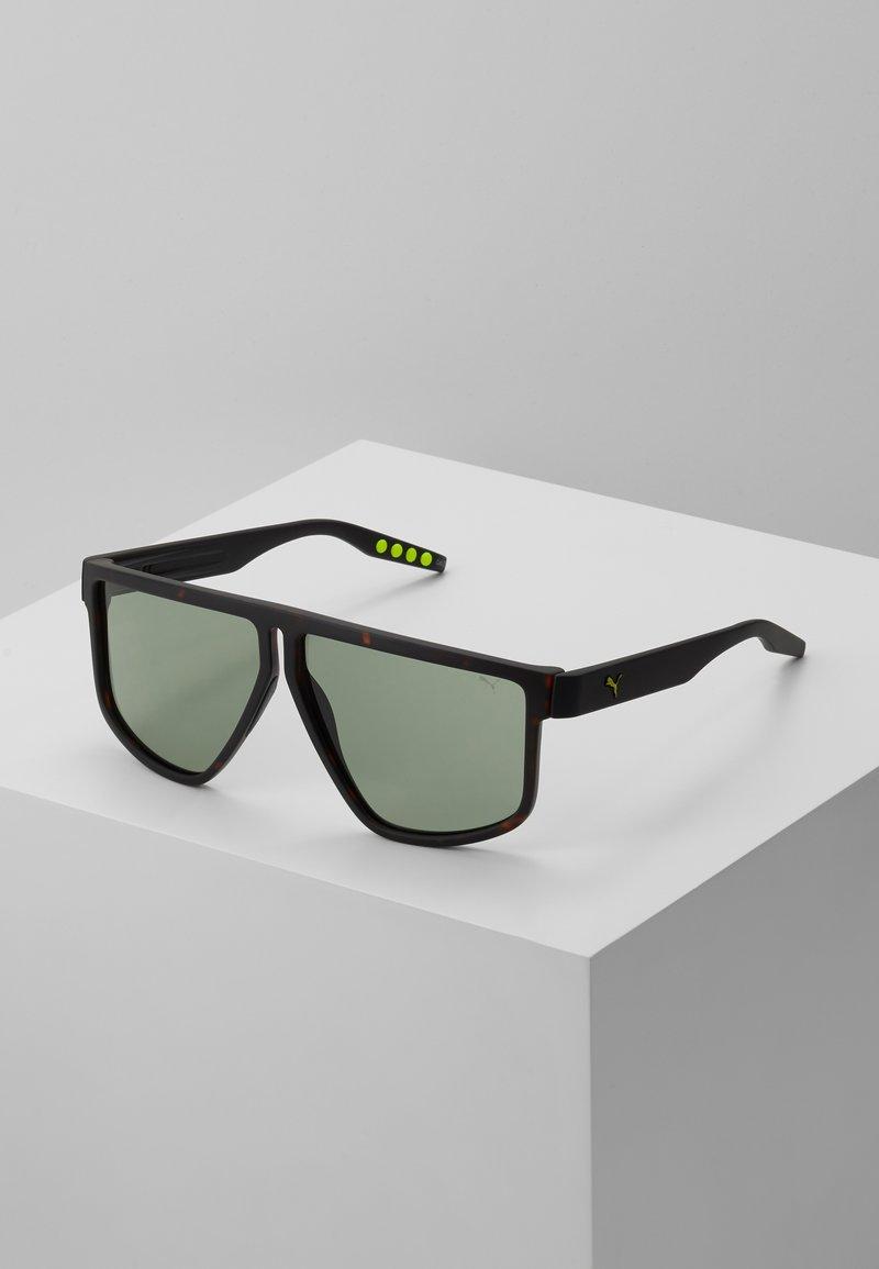 Puma - Sluneční brýle - havana/black/green
