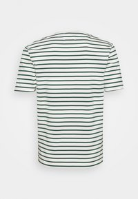Wood Wood - ACE - T-shirts print - offwhite/faded green - 1