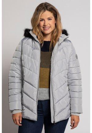 SUBTLE SHIMMER FUR TRIM QUILTED  - Winter jacket - silver
