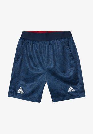 Sports shorts - tecind/conavy/white