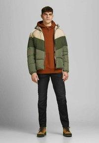 Jack & Jones - Winter jacket - chinchilla - 1