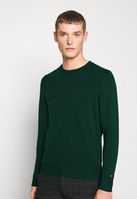 Tommy Hilfiger - TONAL AUTOGRAPH - Pullover - green - 0