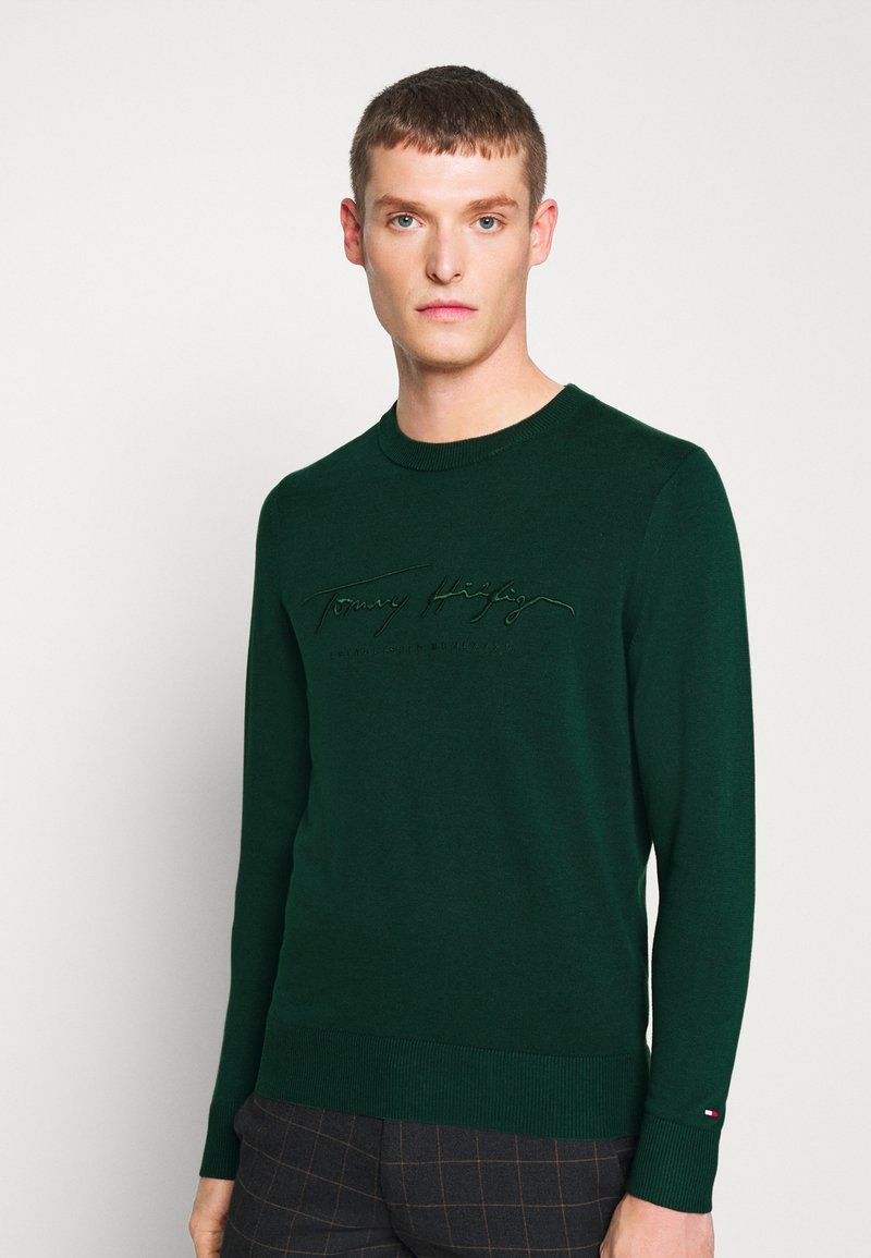 Tommy Hilfiger - TONAL AUTOGRAPH - Pullover - green