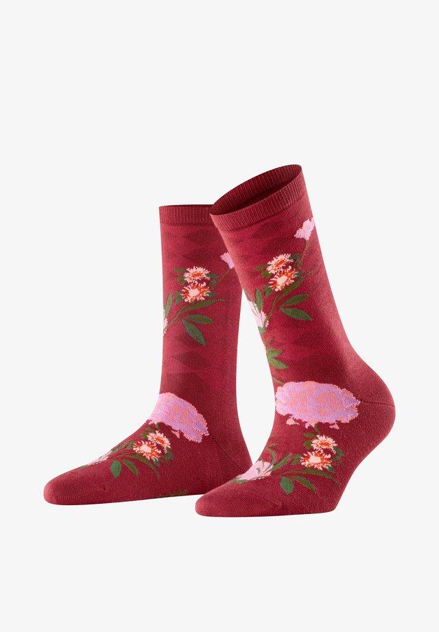 COUNTRY FLOWER - Socks - red plum