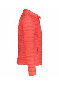 Frieda & Freddies - Winter jacket - original - 2