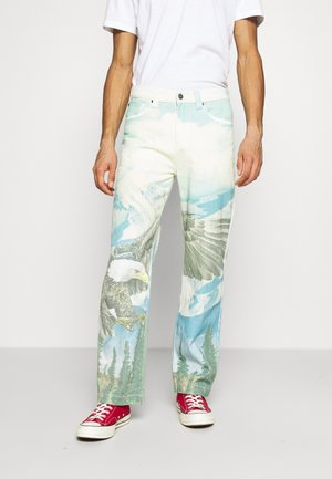 ALASKA LANDSCAPE SKATE - Relaxed fit jeans - multi-coloured