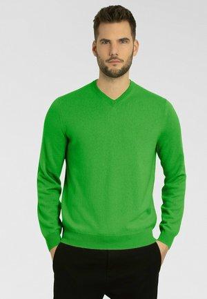 Maglione - spring green