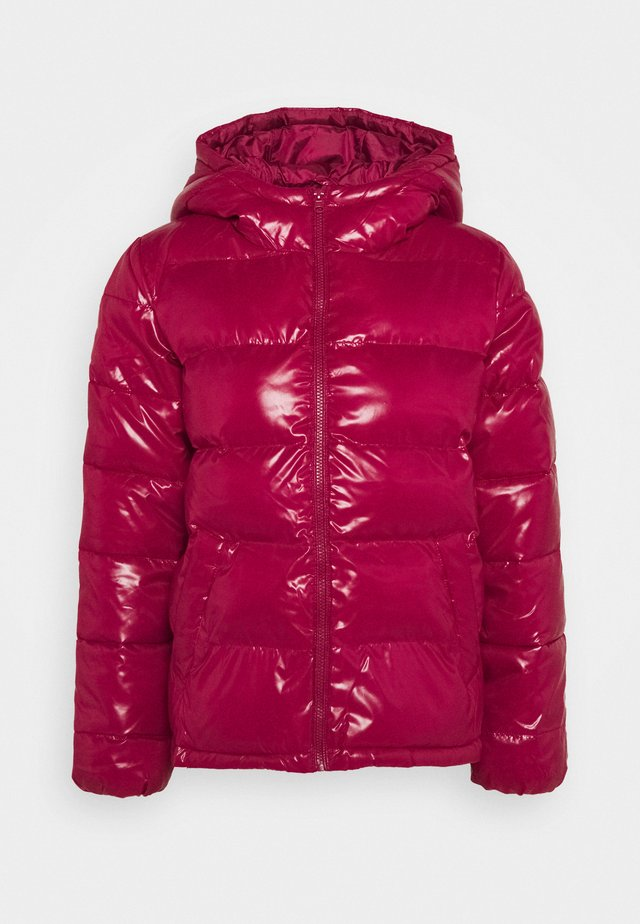 JACKET - Winter jacket - purple