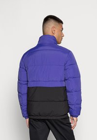 Tommy Jeans - REVERSIBLE PUFFER JACKET - Talvejope - court blue/multi - 2