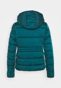 Springfield - ACOLCHADA  - Winter jacket - green - 1