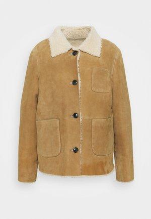 WILLOW SHEARLING JACKET - Leather jacket - sandstone