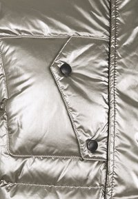 Blauer - GIUBBINI CORTI IMBOTTITO - Down jacket - metallic silver - 2