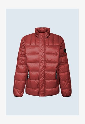 COLERIDGE - Winter jacket - johannisbeere