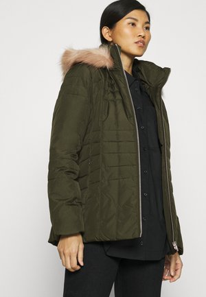 ESSENTIAL JACKET - Zimní bunda - dark olive