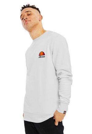 DIVERIA - Sweatshirt - light grey