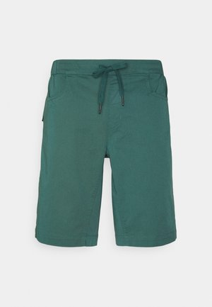NOTION SHORTS - Sports shorts - raging sea