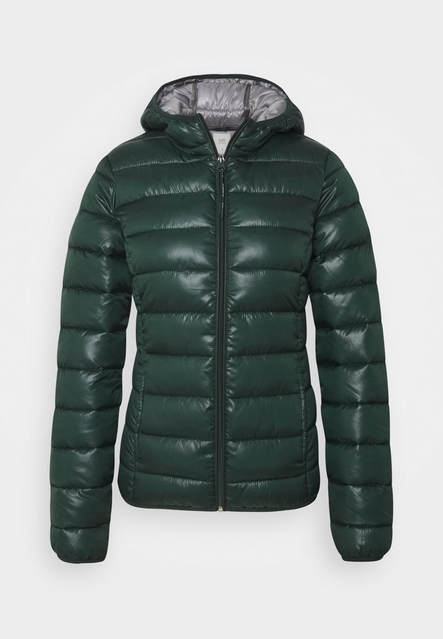 Giacca invernale - dark green