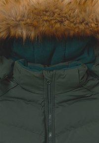 Cars Jeans - KIDS COLETA - Winter jacket - bottle - 6