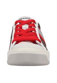 IGI&CO - Sneakers laag - bianco/grigio - 5