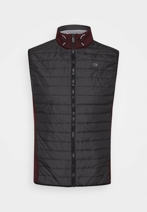 WRANGELL HYBRID GILET - Soft shell jacket - blackberry