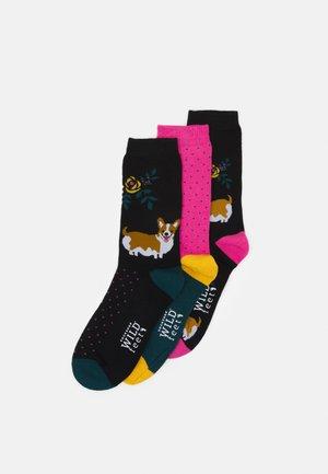 CORGI SOCKS 3 PACK - Chaussettes - multicoloured