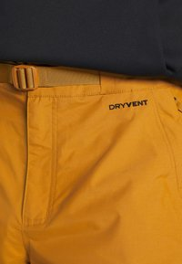 The North Face - UP & OVER PANT TIMBER - Snow pants - tan/black - 3