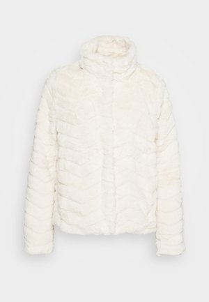 VIALIBA JACKET - Winter jacket - birch