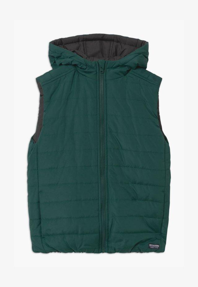 ANDRE - Bodywarmer - green