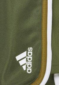 adidas Performance - CLUB SHORT - Sports shorts - wild pine/white - 2