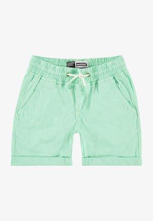 Shorts - pastel leaf