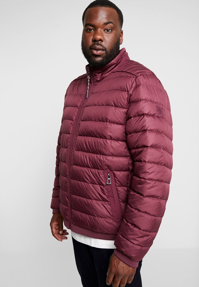 LIGHT WEIGHT BLOUSON  - Light jacket - dark berry