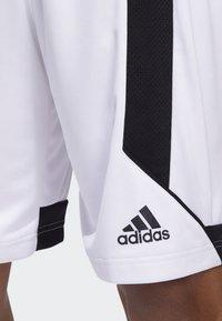 adidas Performance - CREATOR 365 SHORTS - Sports shorts - white/black - 3