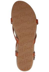 Blowfish Malibu - T-bar sandals - brown - 5