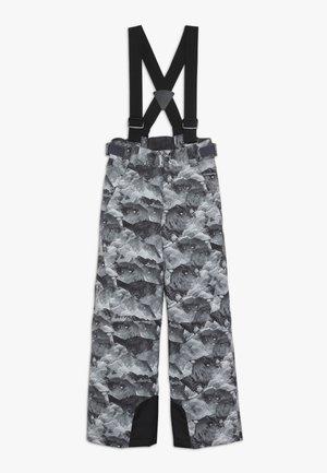 ANDO JUNIOR - Snow pants - grey mountain