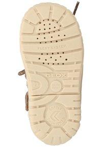 Geox - Baby shoes - smoke grey c9006 - 6