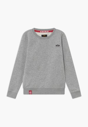 BASIC SMALL LOGO KIDS TEENS - Sweatshirt - grey heather
