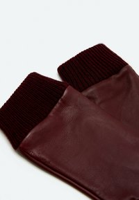 Uterqüe - Gloves - bordeaux - 3
