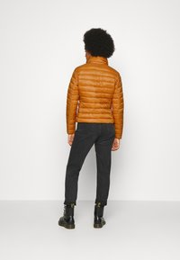 Vila - VISIBIRIA SHORT JACKET - Light jacket - pumpkin spice - 2