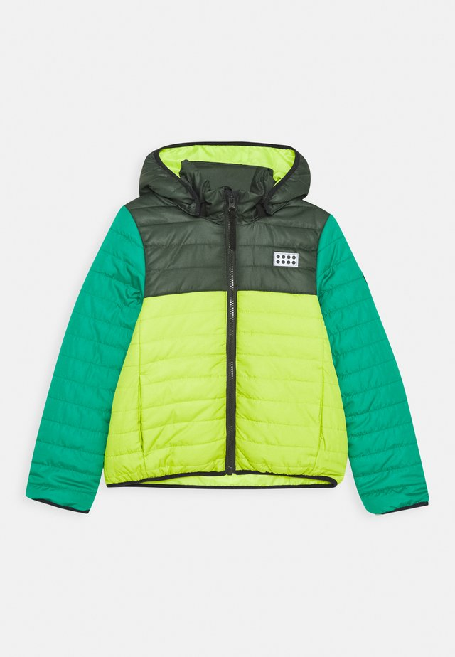 JOSHUA JACKET UNISEX - Winterjas - light green