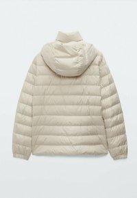 Massimo Dutti - Winter jacket - grey - 1