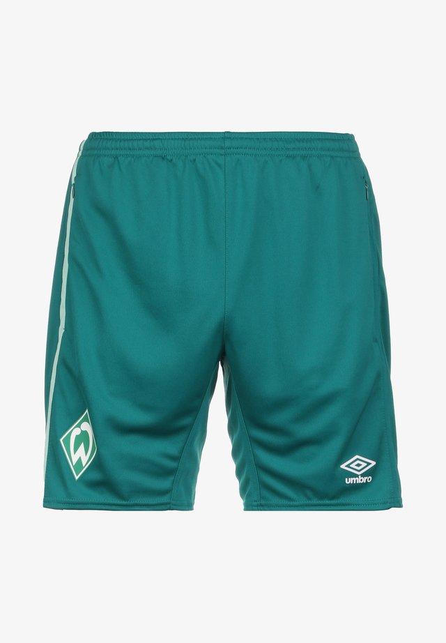 WERDER BREMEN TRAINING - Sports shorts - fanfare / ice green