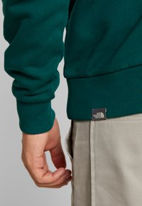 The North Face - REDBOX HOODIE - Mikina s kapucí - night green - 6