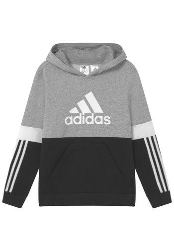 COLORBLOCK ESSENTIALS - Felpa con cappuccio - black medium grey heather white