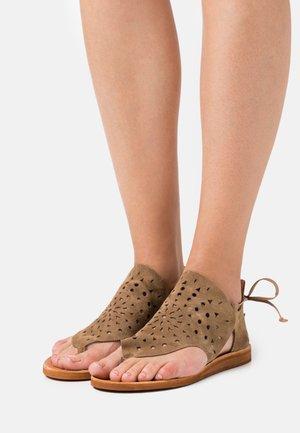 CAROLINA  - T-bar sandals - marvin stone
