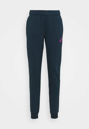 BIG LOGO PANT - Tracksuit bottoms - french blue/digital grape